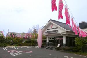 こどもの日企画「ピンクの鯉のぼり」がミュージアムを泳ぐ!