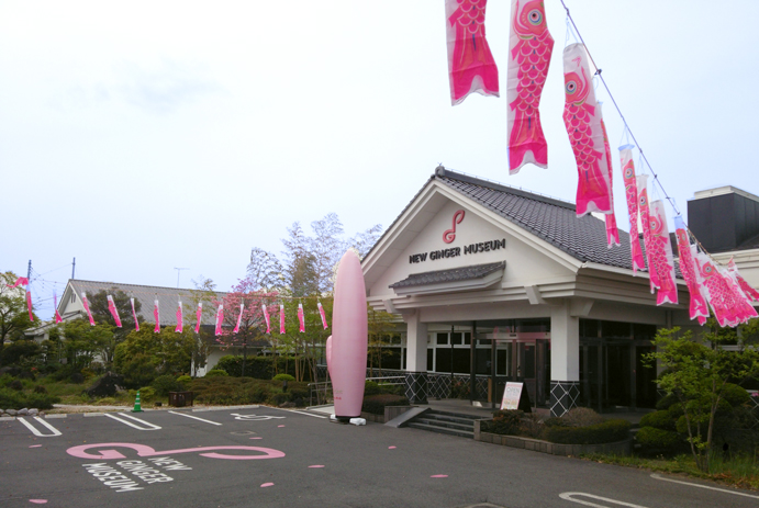 ピンクの鯉のぼり
