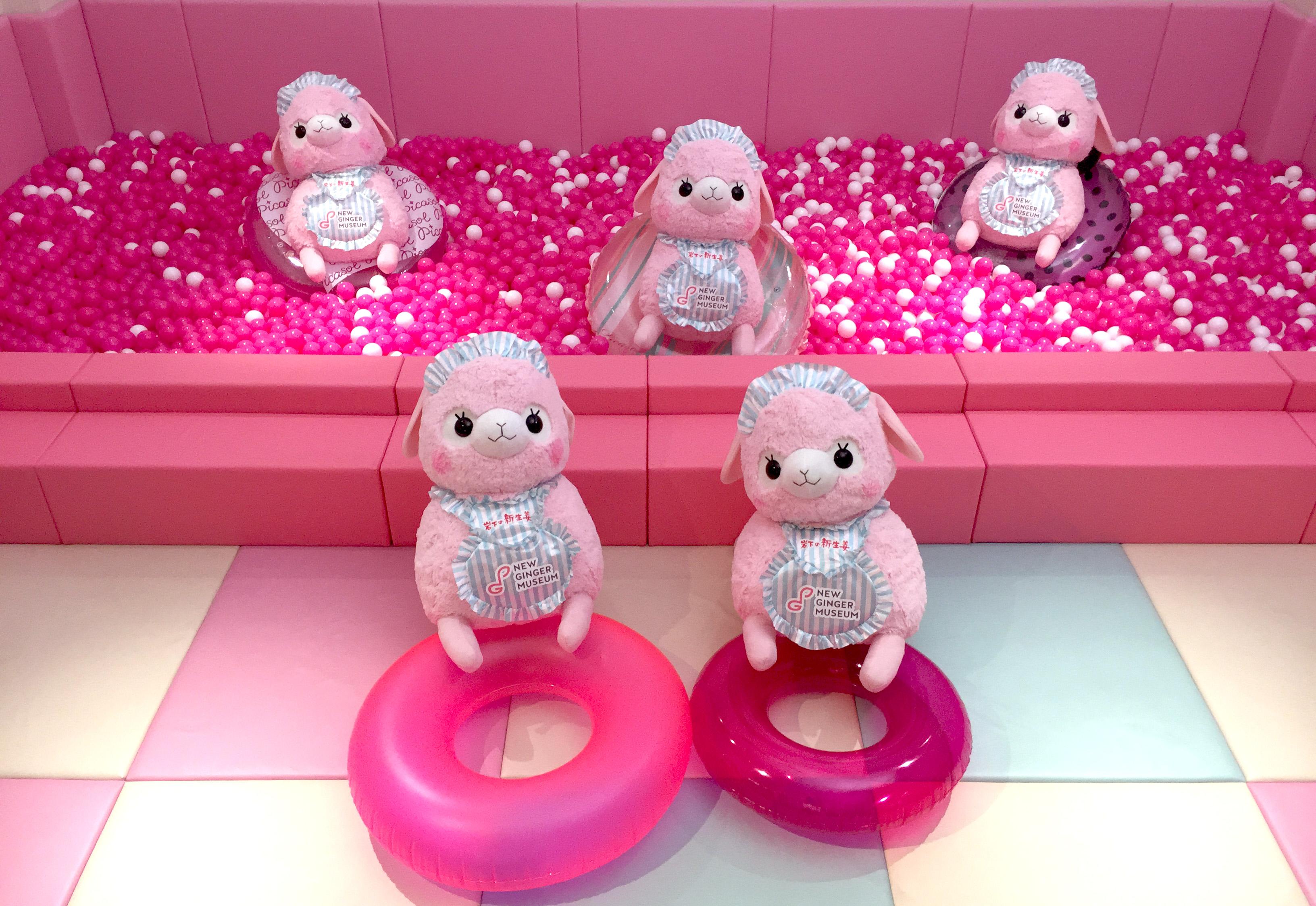 「アルパカ広場」にピンクの海が出現(ボールプール)