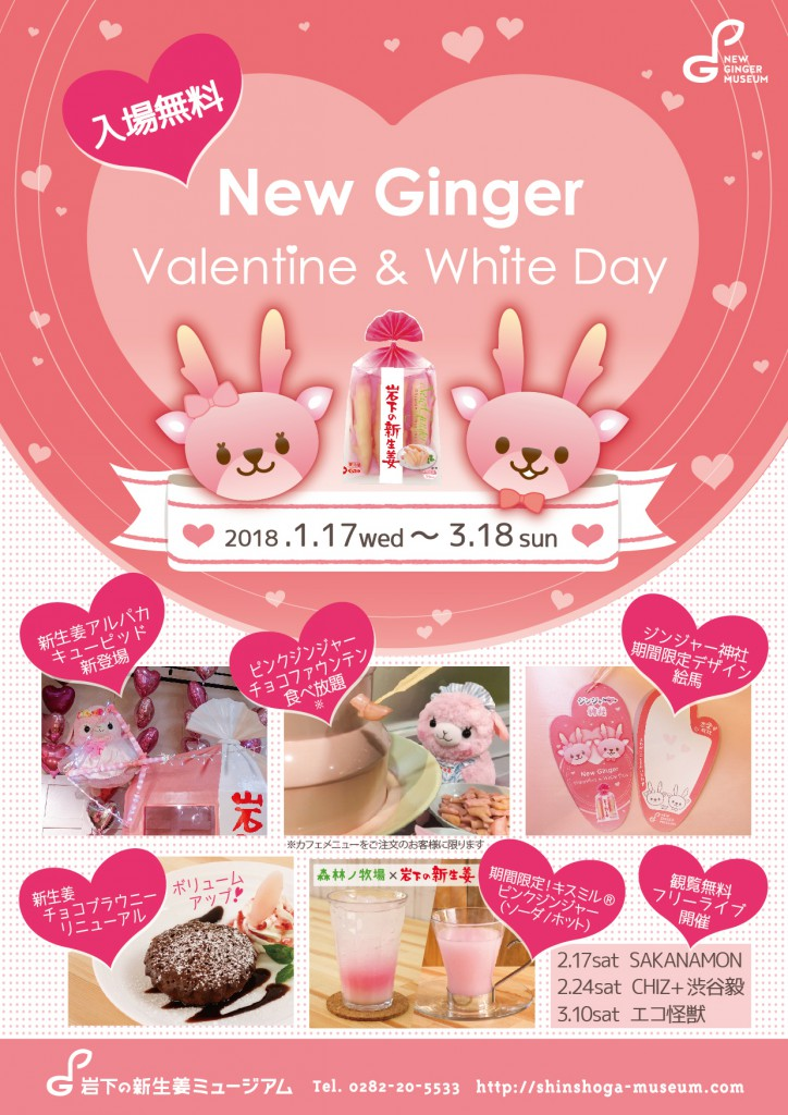 画像:「NEW GINGER Valentine & White Day」ポスター
