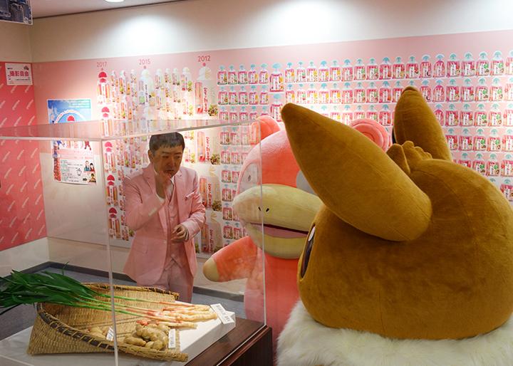画像:岩下の新生姜の原料の生姜(本島姜/ペンタオジャン)と一般的な根ショウガ・新ショウガの違いを模型で説明