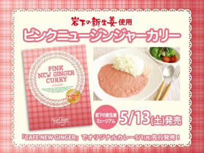 『ピンクニュージンジャーカリー』2017年5月13日発売